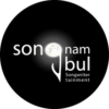 Songnambul Partner